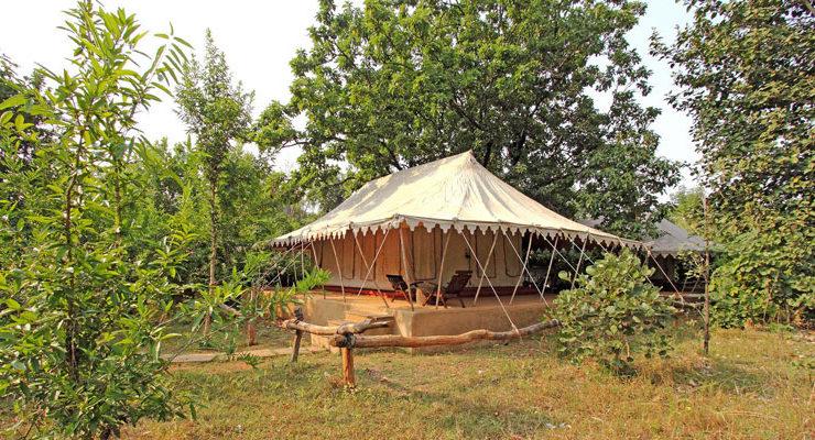 Bandhavgarh Camp