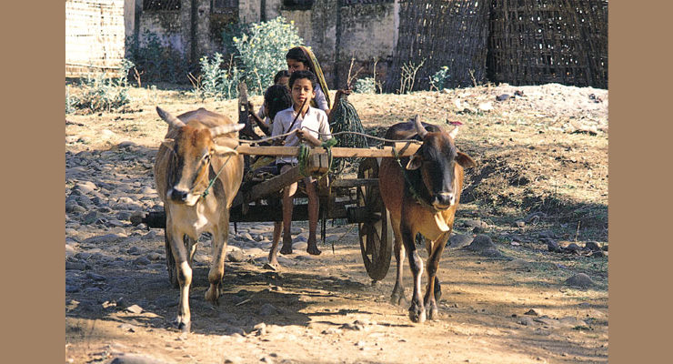 People in Bandhavgarh