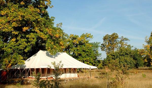 bandhavgarh national park booking