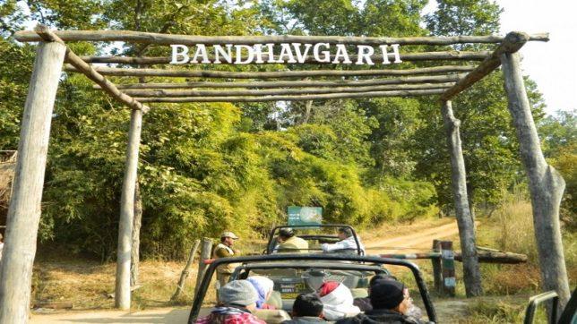 Bandhavgarh National Reserve