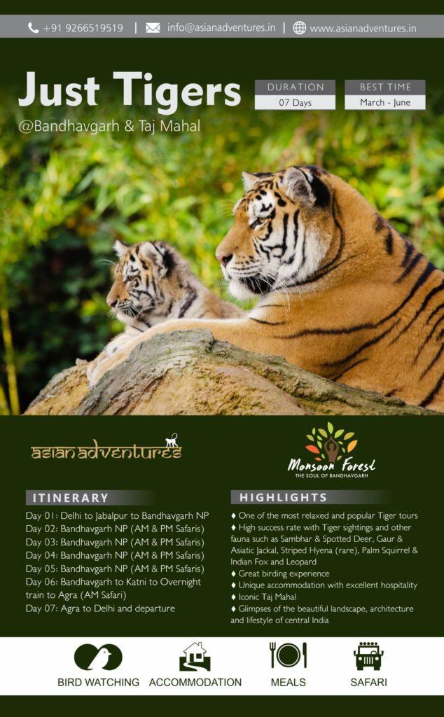 bandhav-national-park